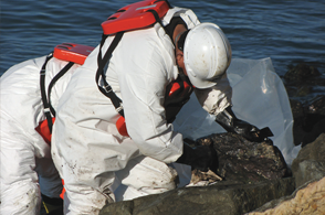san-francisco-bay-oil-spill-clean-up-3